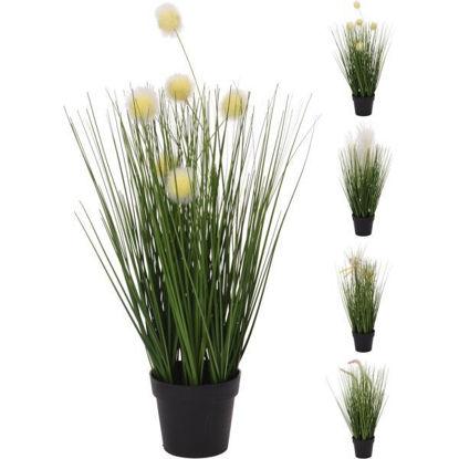koop317220070-maceta-c-planta-46cm-317220070