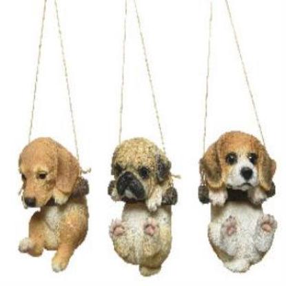 kaem828607-perro-cachorro-stdo-3-mod-