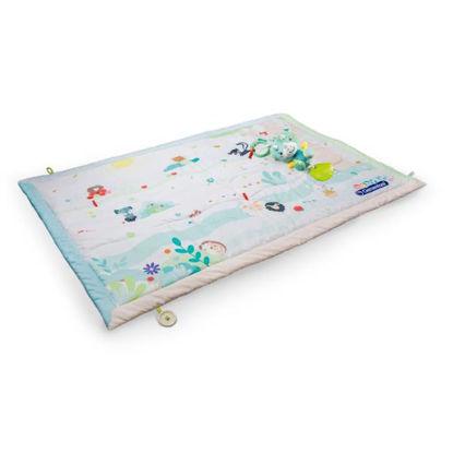 clem173181-manta-tapiz