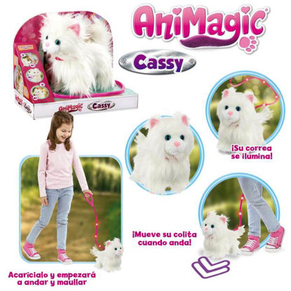goli256607-mascota-cassy-mi-gatita-