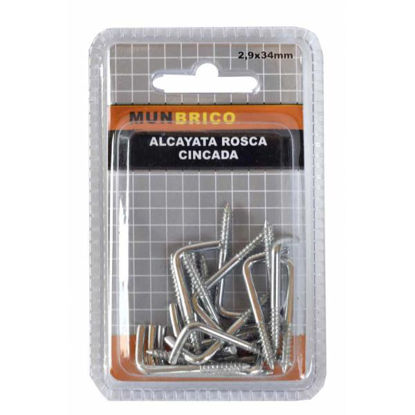 munc71208-alcayata-rosca-cincada-2-