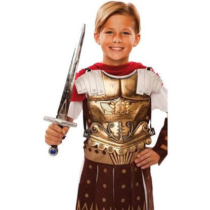 fyas101409-peto-romano-c-espada