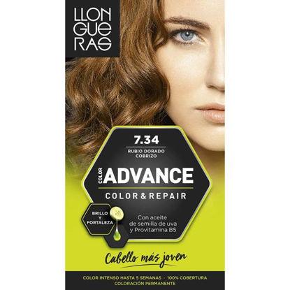 cash10234-tinte-llongueras-advance-