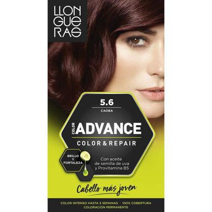 cash12701-tinte-llongueras-advance-