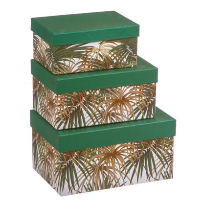 nahu405070-cajas-carton-tropical-3u