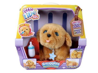 famo700013210-mascota-perro-little-