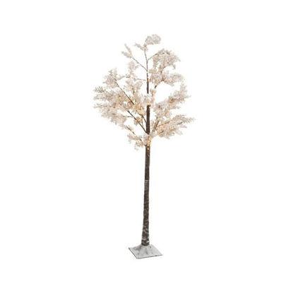 kaem492768-arbol-flores-blancas-180
