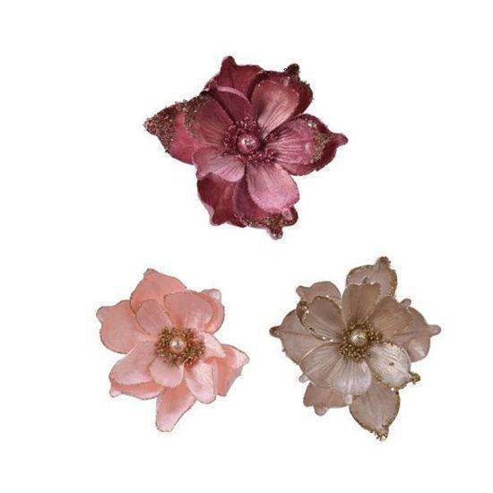kaem629517-magnolia-22cm-clip-3-col