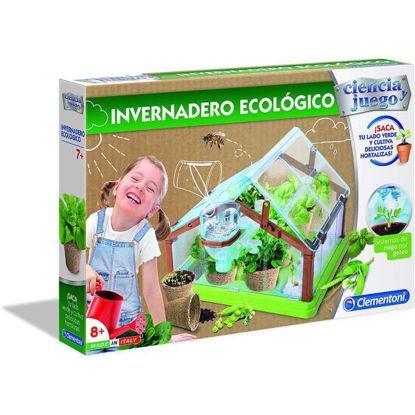 clem55375-invernadero-ecologico