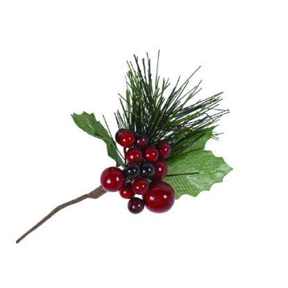 denaap46308-pick-berrys-rojos-c-pin