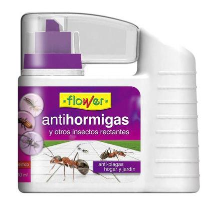 ower120532-antihormigas-talquera-40