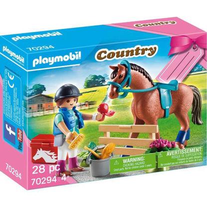 play70294-granja-caballos