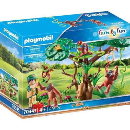 play70345-orangutanes-c-arbol