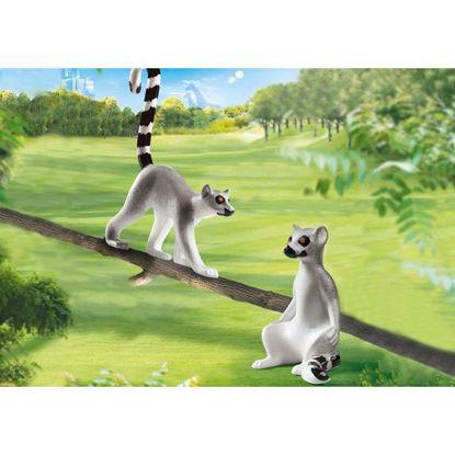 play70355-lemures