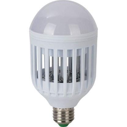 decameli0220-atrapa-insectos-lampar