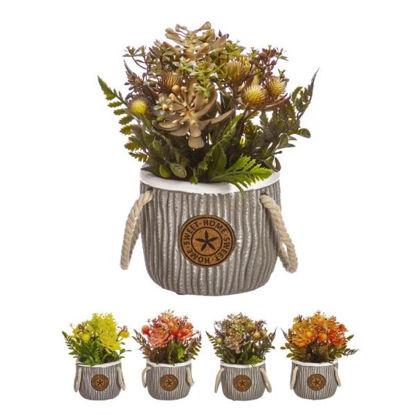 nahu5468-maceta-flores-sweet-homes-